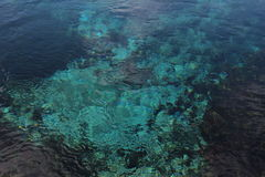 Les ressorts de Waikaropupu Photographie stock libre de droits