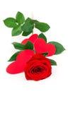 Les restes de Rose avec des coeurs ont effectué le papier d'ââof Image libre de droits