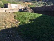 Les restes des bains de Sutro, San Francisco, 7 Photographie stock