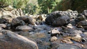 Les rochers sur le courant Photo libre de droits