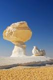 Les roches aiment un champignon de couche et un poulet images stock