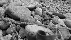 Les roches dispersées Images libres de droits