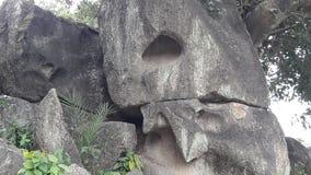 Les roches et les racines ont été le point culminant Image libre de droits