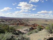 Les roches rouges aménagent en parc au parc national de forêt pétrifiée Photo libre de droits