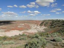 Les roches rouges aménagent en parc au parc national de forêt pétrifiée Image libre de droits