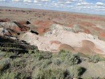 Les roches rouges aménagent en parc au parc national de forêt pétrifiée Images libres de droits