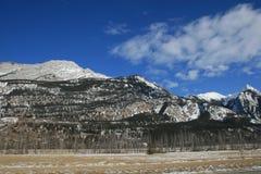 Les Rocheuses canadiennes sauvages Photo libre de droits