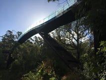 Les Rois Park Perth de passage couvert de cime d'arbre Photos libres de droits