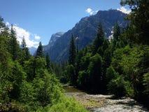Les Rois River horizontale Images libres de droits
