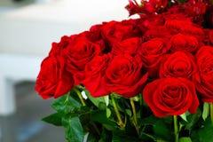 Les roses photos libres de droits