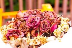 Les roses d'amour se fanent, sec Photographie stock libre de droits