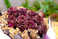 Les roses d'amour se fanent, sec Photo stock