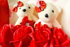 Les roses d'ours image libre de droits
