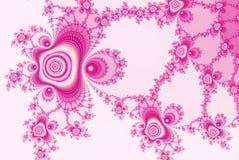 Les roses de fractale, ornementent le blanc rose Photographie stock