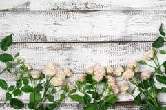 Les roses encadrent au bois Photos stock