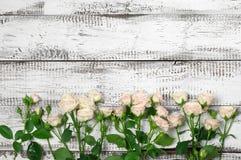 Les roses encadrent au bois Images stock