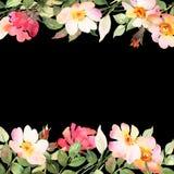 Les roses encadrent la composition foncée décorative Illustration d'aquarelle Images stock