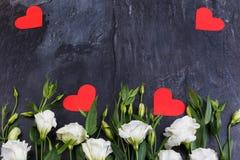 Les roses japonaises se situent dans une rangée de dessous sur un fond en pierre Images libres de droits