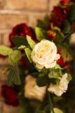 Les roses rouges et blanches sont avec le fond de mur de briques Photos stock