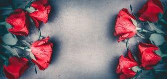 Les roses rouges lient la bannière de disposition avec sur le fond de bureau gris, vue supérieure Jour de valentines, datant photo stock