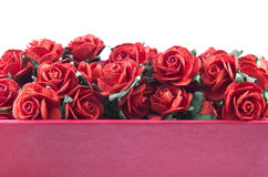 Les roses rouges ont isolé Images stock