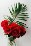Les roses rouges sur un fond gris, et le vert part, support dans un vase transparent Images libres de droits