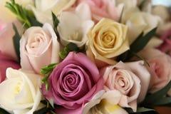 Les roses se ferment vers le haut Photos libres de droits