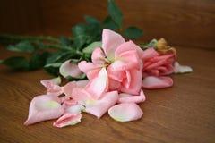 Les roses se sont fanées Photo stock