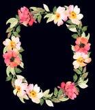 Les roses tressent la composition foncée décorative Photos libres de droits