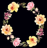 Les roses tressent la composition foncée décorative Photos stock