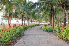 Les routes en parc Image libre de droits