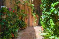 Les rues de la vieille ville italienne de Sienne Images stock