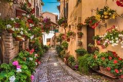 Les rues pavées en cailloutis des murs admirablement décorés avec le colo Photographie stock
