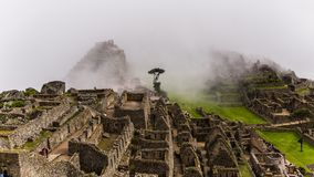 Les ruines célèbres d'Inca du picchu de machu au Pérou Photos stock