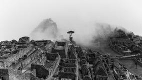 Les ruines célèbres d'Inca du picchu de machu au Pérou Photo stock