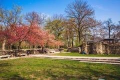Les ruines d'un monastère dominicain antique dans le Central Park sur l'île de Margaret à Budapest, Hongrie images stock