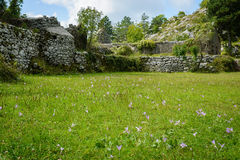 Les ruines de la maison dans les mountatins Monténégro, l'Europe Images libres de droits