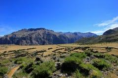 Les ruines de Maukallacta sur la montagne au-dessus de Puica Photographie stock