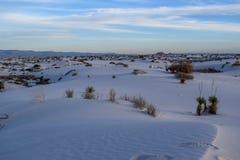 Les sables blancs stupéfiants abandonnent au Nouveau Mexique, Etats-Unis photographie stock libre de droits
