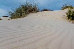 Les sables blancs surréalistes étonnants du Nouveau Mexique Photos libres de droits
