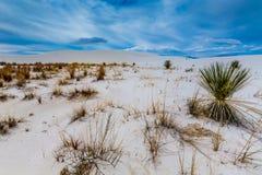 Les sables et les dunes blancs surréalistes étonnants du Nouveau Mexique Image libre de droits