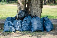 Les sacs de déchets Dégagement de la forêt des débris photographie stock libre de droits