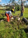 Les sapeurs-pompiers enlèvent des débris d'ouragan photo libre de droits