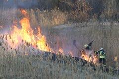 Les sapeurs-pompiers luttent un feu de forêt au printemps image stock