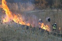 Les sapeurs-pompiers luttent un feu de forêt au printemps photo stock