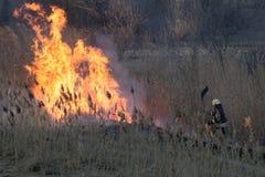 Les sapeurs-pompiers luttent un feu de forêt au printemps kiev L'Ukraine, photo stock