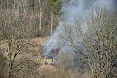 Les sapeurs-pompiers s'éteignent un feu d'herbe sèche à côté de la forêt, fumée se levant près des ruches photo stock