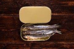 Les sardines peuvent dedans Photographie stock libre de droits