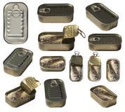 Les sardines peuvent placer Images libres de droits