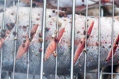 Les saumons d'arc-en-ciel en épices ont fait frire à l'enjeu sur le gril image stock
